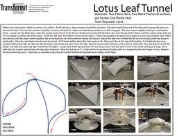 Lotus Leaf Directions 2011 255