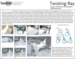 Twisting Ray Directions 2011 255