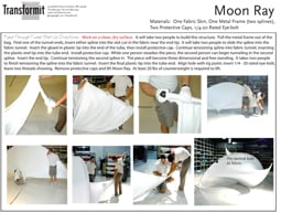 Moon Ray Directions 2011 255