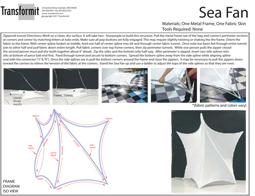 Sea Fan Directions 2011 255