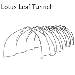 Lotus Tunnel2 desc 255