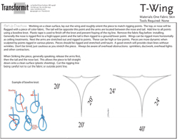T Wing Directions 255