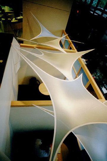 Fabric structures, custom, office, Free Form Wings, Client: Selbert Perkins Design.